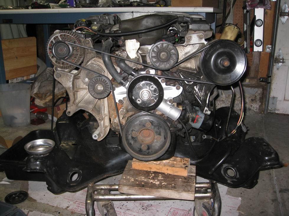 5.0 Engine: Belt length w/o smog or compressor ...